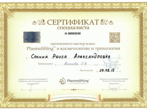 сертификат мастер класс